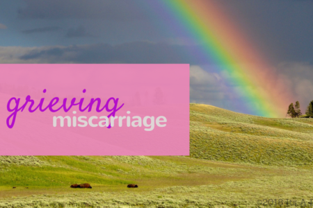 miscarriage/www.professionalmomma.com