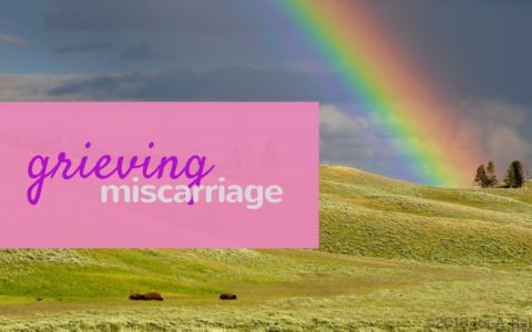 miscarriage/www.professionalmomma.com