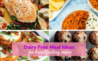 dairy free breastfeeding recipes