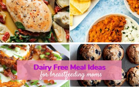 dairy free breastfeeding recipes